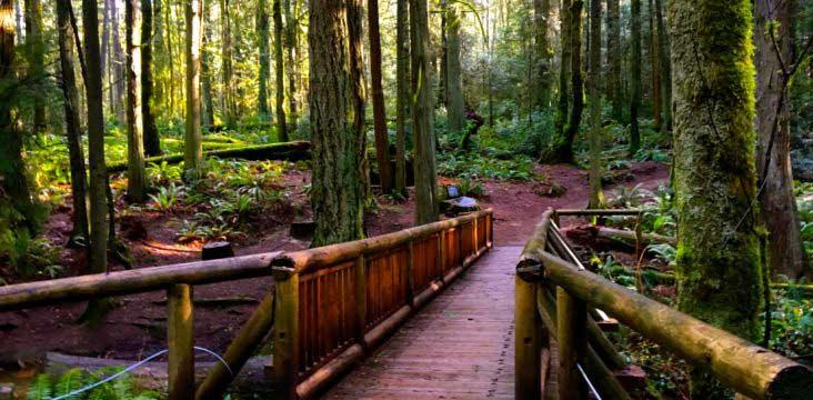 Featured Trail Town Bainbridge Island Wa Atra