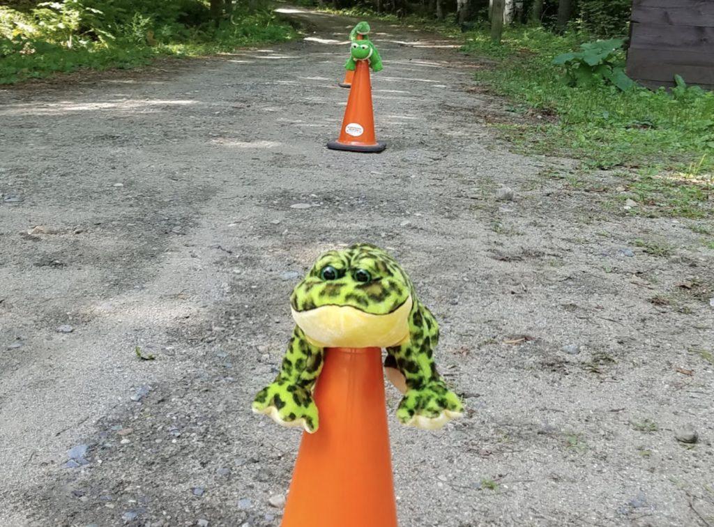 Froggy Mascot